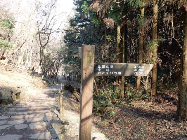 A013 2017.03.07 - 024 三毳山 (カタクリの園・東屋付近).jpg