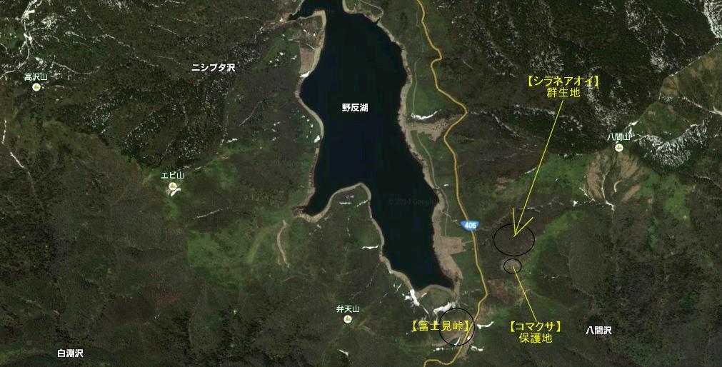 http://hakkaisan-photo.com/q/sanya-syoka/%E9%87%8E%E5%8F%8D%E6%B9%96%20google%20Map%20%E5%86%99%E7%9C%9F1.JPG