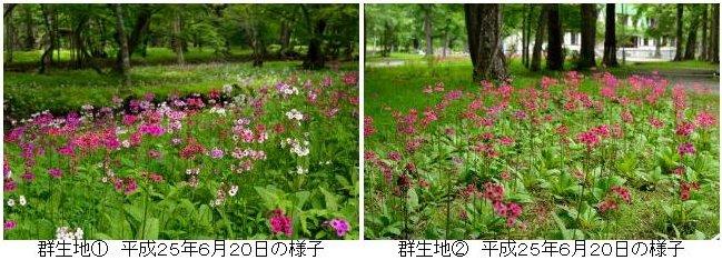 http://hakkaisan-photo.com/q/sanya-syoka/%E5%8D%83%E6%89%8B%E3%82%B1%E6%B5%9C%E3%80%802B.jpg