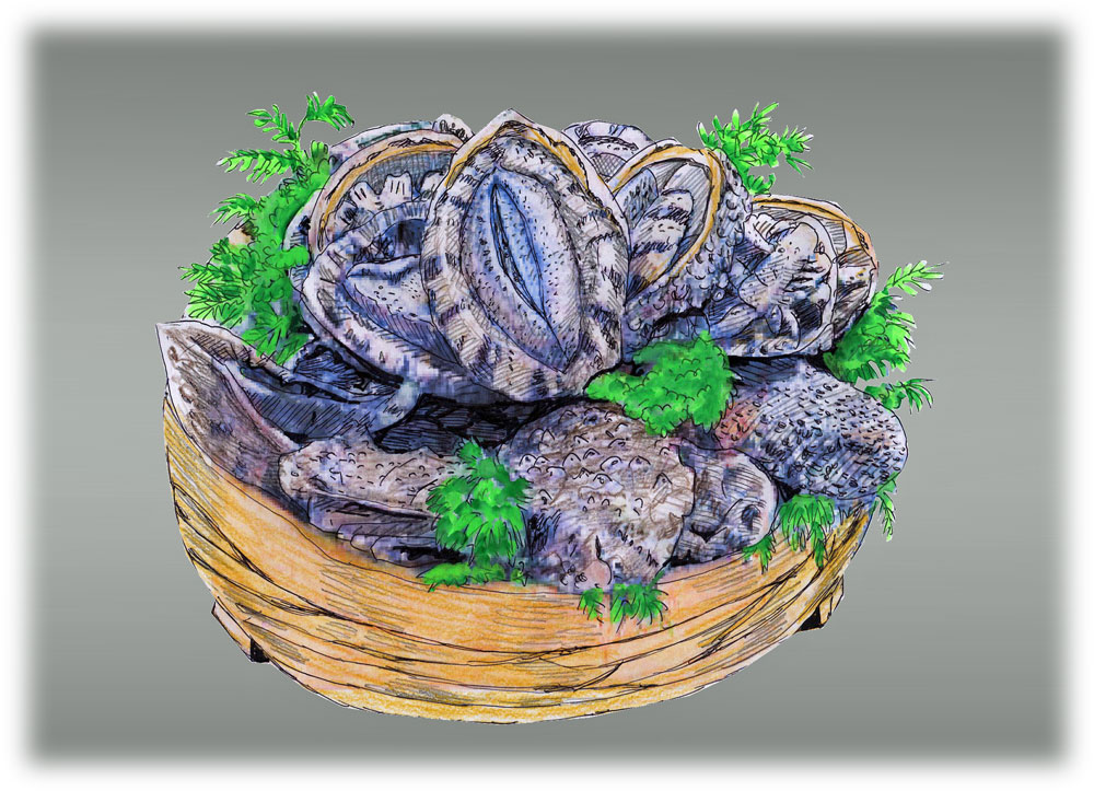 http://hakkaisan-photo.com/season/11%E3%81%82%E3%82%8F%E3%81%B3.jpg