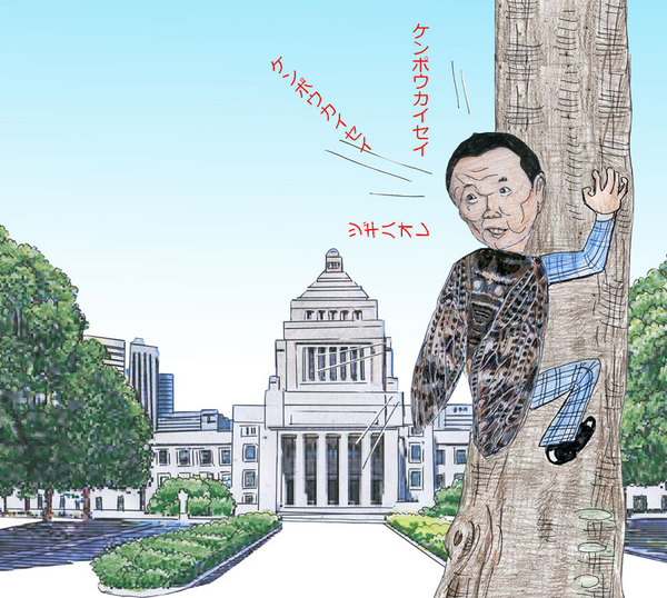 8せみの声.jpg