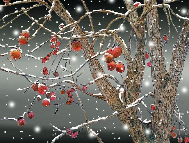 16冬柿.jpg