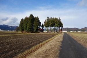 25%藤塚遠景DSC00379.jpg