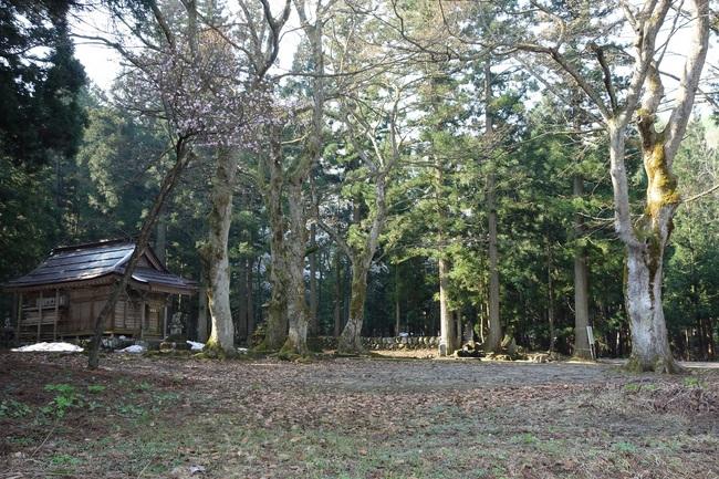25%藤原神社DSC01008.jpg