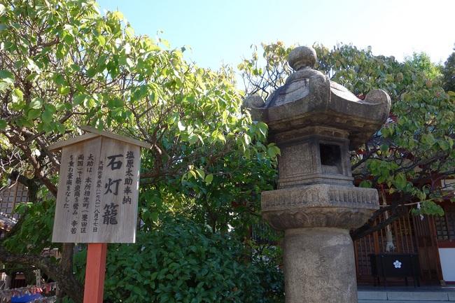 20131027亀戸天神菊祭り04.jpg