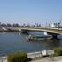 墨堤桜橋全景0316.jpg