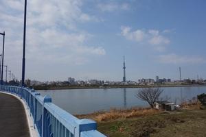 平井大橋.jpg