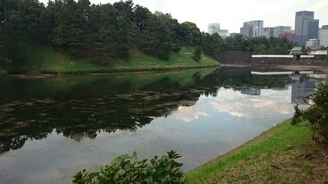 国会前庭桜田門20140922.jpg