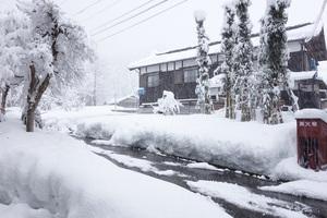 0101新潟庭.jpg