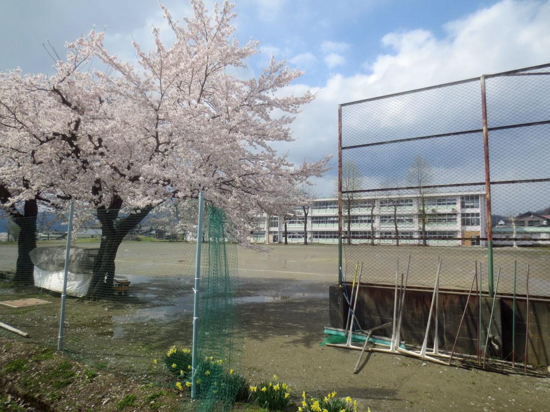 http://hakkaisan-photo.com/tomomiti/2016/04/12/h28-4-11/IMG_2286.jpg
