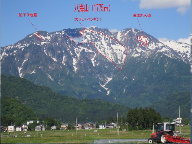 八海山・牛ヶ岳の雪形