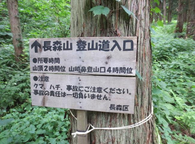 H25-7-20長森山トレッキング15.jpg