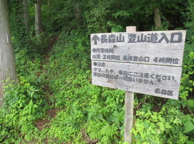 H25-7-20長森山トレッキング2.jpg