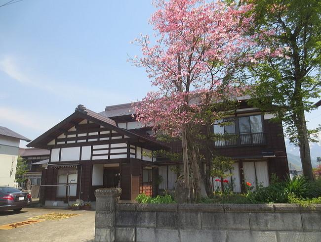 H26-5-4新堀新田花水木9-2.jpg