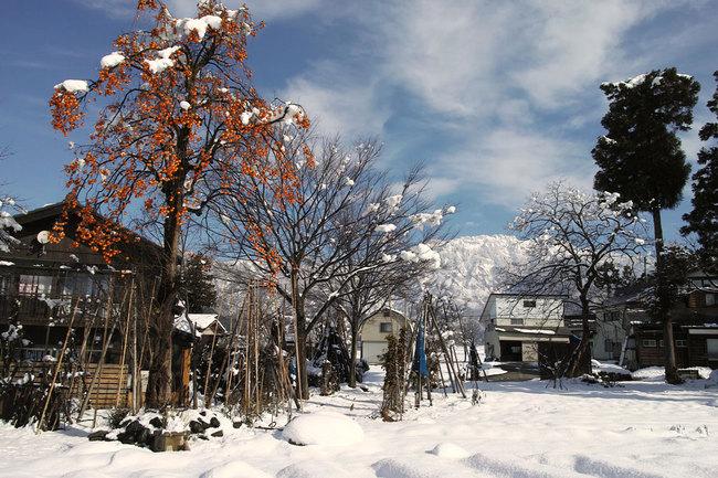 H28-12-12初雪5.JPG