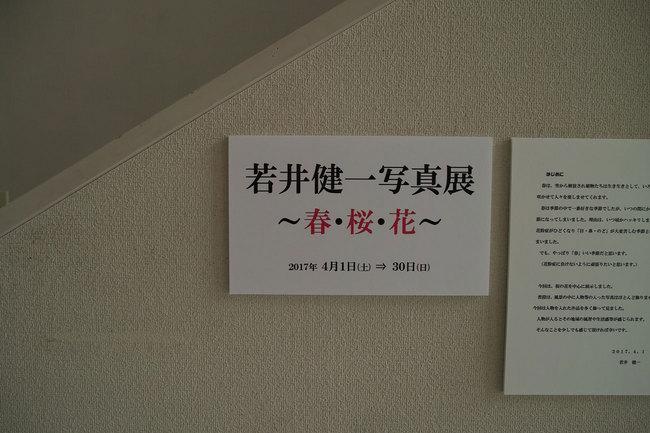H29-4-21城内さんぽ歴史編10.jpg